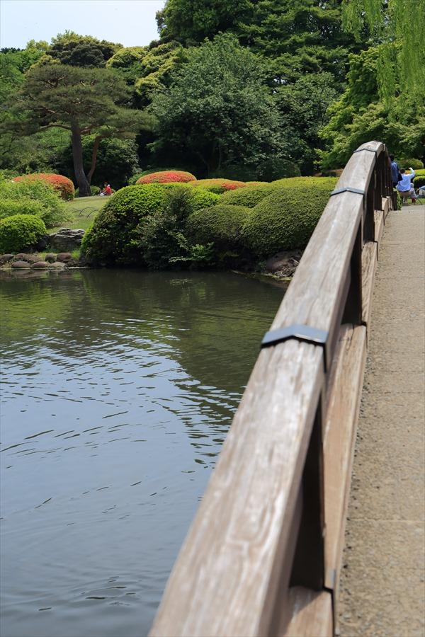 新宿御苑みどり木橋とつつじ04