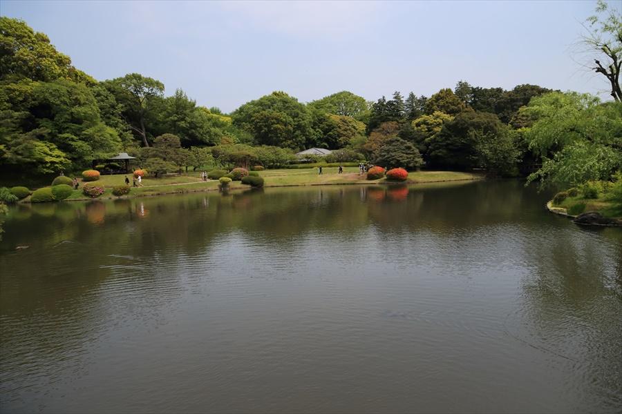 新宿御苑みどり池05