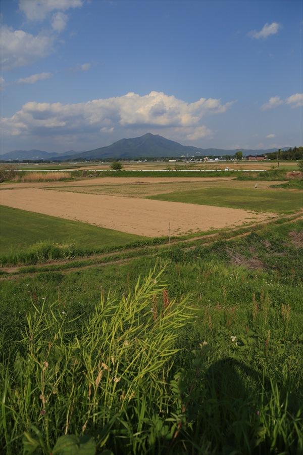 5月自宅筑波山遠景を撮る息子の陰11