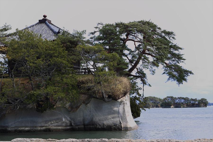 松島海岸五大堂遠景フォーカス02