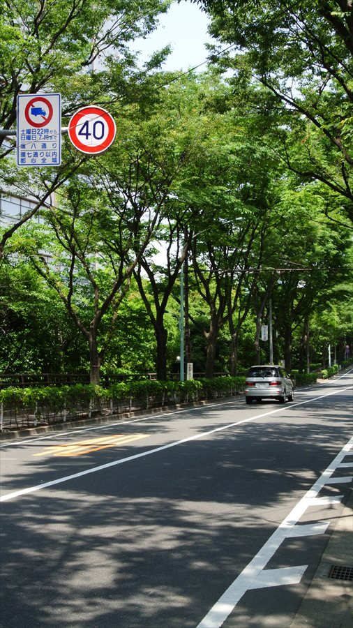 多摩川J1大田区側並木道路02