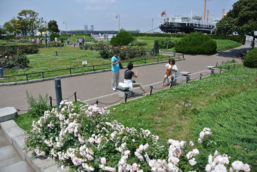 横浜Y154山下公園と氷川丸12