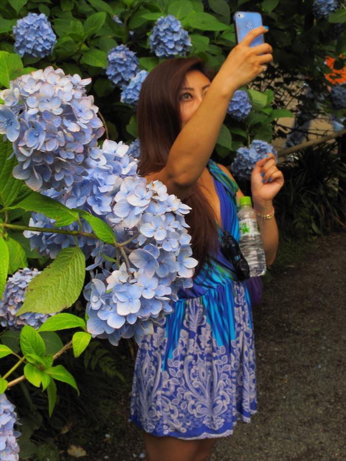 鎌倉紫陽花明月院01紫陽花と同化する紫陽花女性05