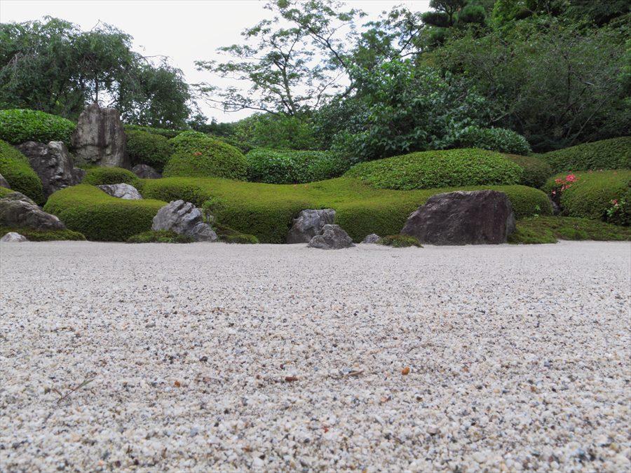 鎌倉紫陽花明月院02枯山水庭01