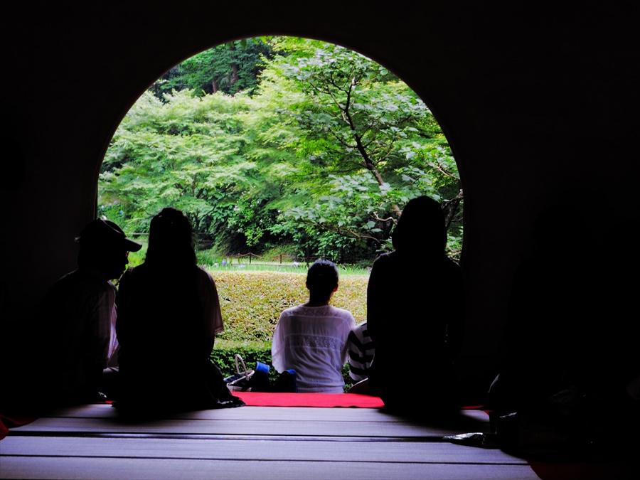 鎌倉紫陽花明月院02名物丸窓04