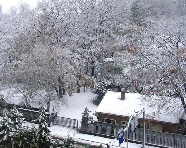 雪景色俯瞰