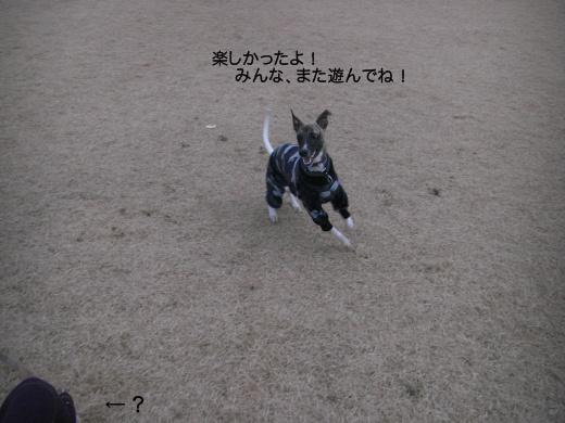 CIMG70861.jpg