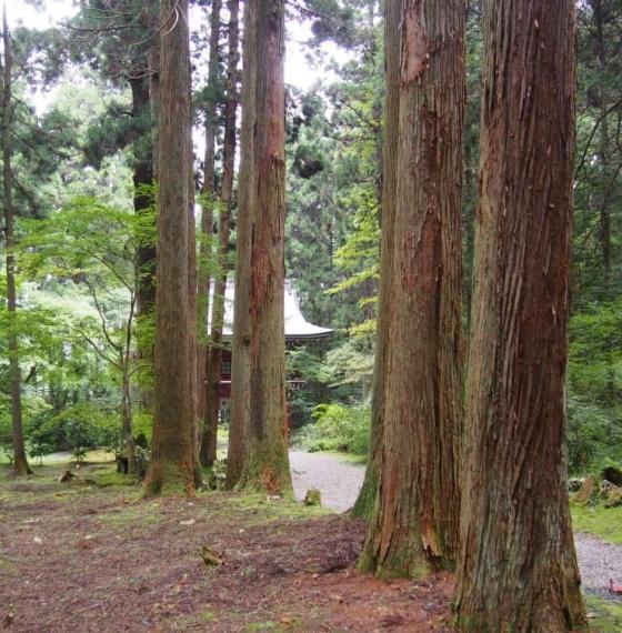 御岩神社12