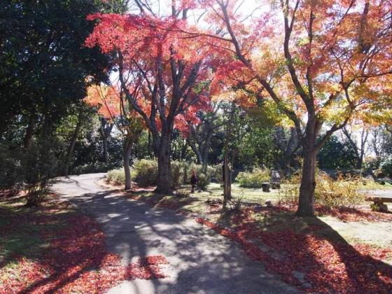 鹿島城山公園06