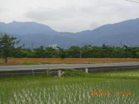 H240621田植麦畑モノ畑風景