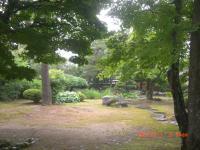 H240701高山陣屋庭