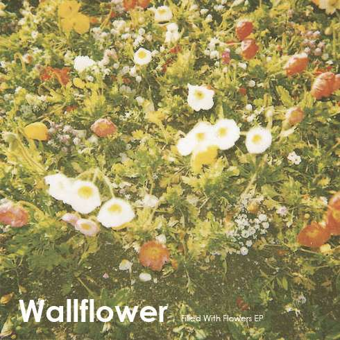 Wallflower Filled With Flowers