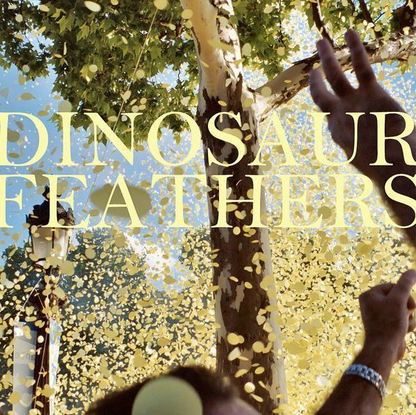 dinosaur-feathers-whistle-tips.jpg