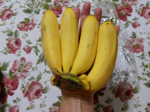 DSCN8729バナナ