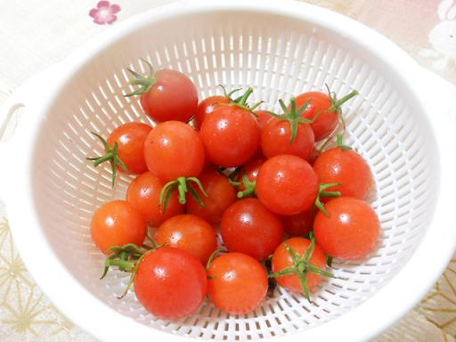 DSCN9438トマト