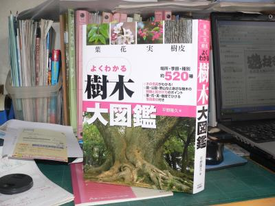 ベランダに並ぶ植木たちの種名を調べるために使った『よくわかる樹木大図鑑』(平野隆久著、2011年、永岡書店刊)
