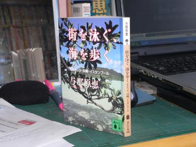 『街を泳ぐ、海を歩く-カルカッタ・沖縄・イスタンブール-』(与那原恵著、1998年、講談社文庫)
