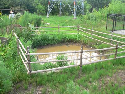 第2の山はこの池を掘り下げたときに出た土で作られた