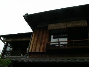 IMGP0256.jpg