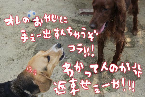 0601稲荷3
