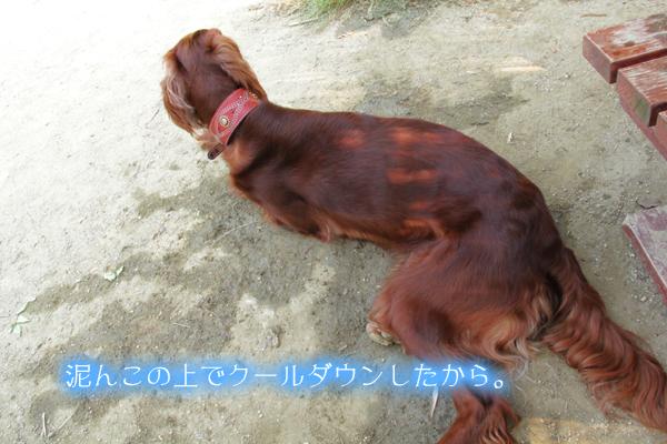 0601稲荷2