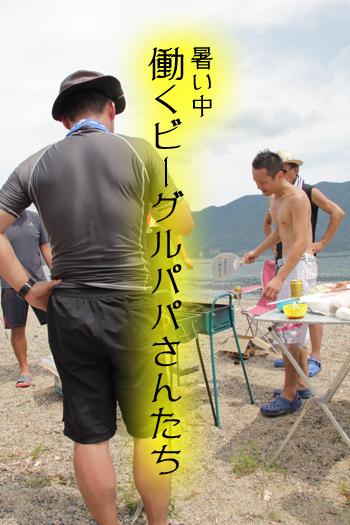 0813レモンビーグル3