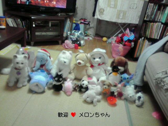 NEC_0016.jpg