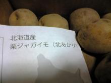 がっきーのブログ-Image1027.jpg
