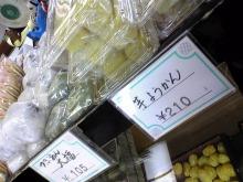 ぱぱらっち マダムがっきーぃ の 日記-Image0451.jpg