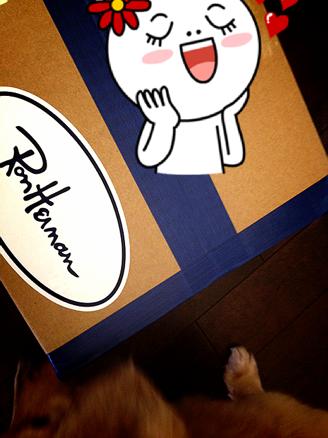 ぱぱらっち マダムの 日記-IMG_3060.png