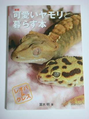 kawaiiyamorito.jpg