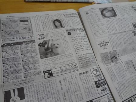 DSC07318.jpg