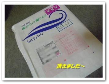 IMGP0491_20121202003849.jpg