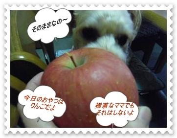 IMGP0599.jpg