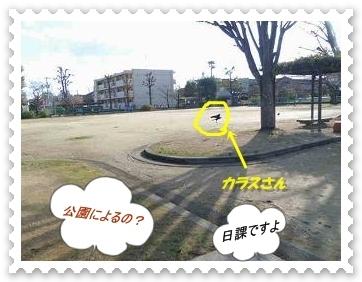 IMGP0721.jpg