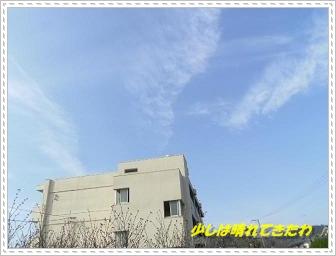 IMGP1060_20121215103116.jpg
