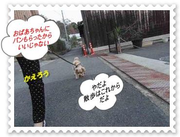IMGP1192_20121216235824.jpg