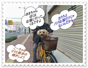 IMGP1479_20121224004853.jpg
