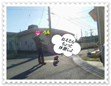 IMGP1601_20121227003500.jpg