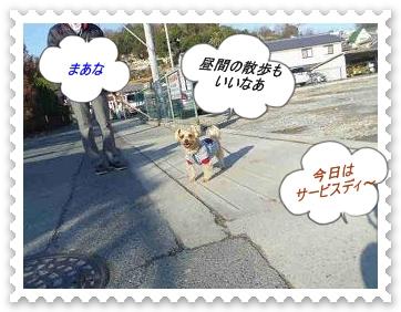 IMGP1912_20130106010646.jpg