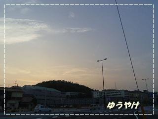 IMGP3051_20120713004654.jpg