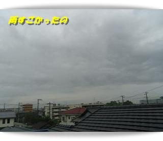 IMGP3081.jpg