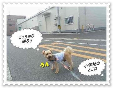 IMGP3169_20120716002740.jpg
