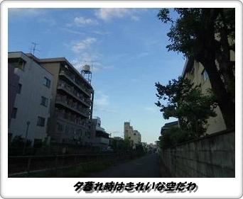 IMGP3308.jpg