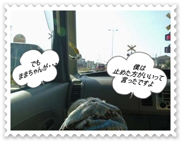 IMGP8394.jpg