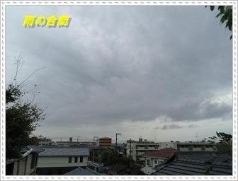 IMGP8511_20121029003748.jpg
