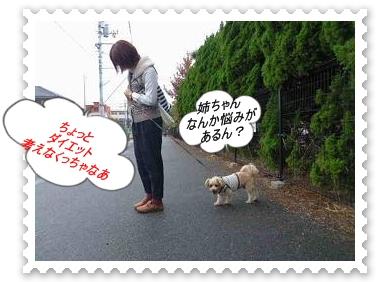 IMGP8514_20121029003859.jpg