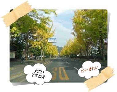 IMGP9309_20121111001710.jpg