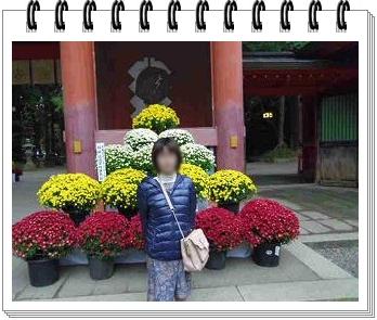 IMGP9412_20121115000922.jpg