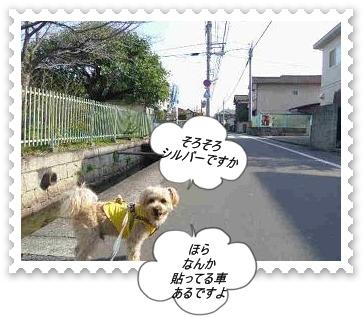 IMGP9800.jpg